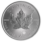 2014-silver-maple-reverse
