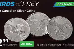 Silver Birds Of Prey Coins – $2.99 Over Spot!